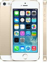 Apple iPhone 5S 16 Gb (Gold)