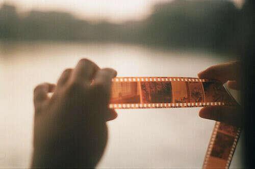 Курс плёночной фотографии