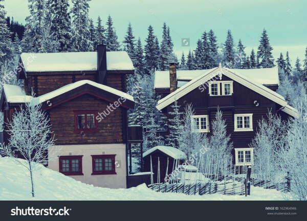 stock-photo-winter-forest-162964946.jpg (1500×1080)