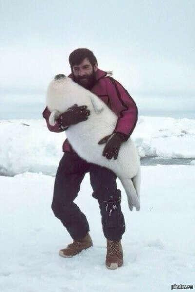 To hug a baby seal