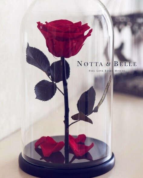 "Розу из ""Красавица и Чудовище"""