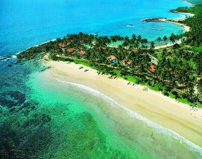 Поездка на Шри-Ланку!