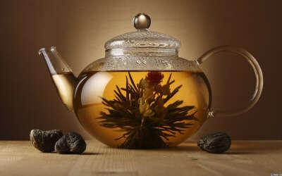 Стеклянный чайник