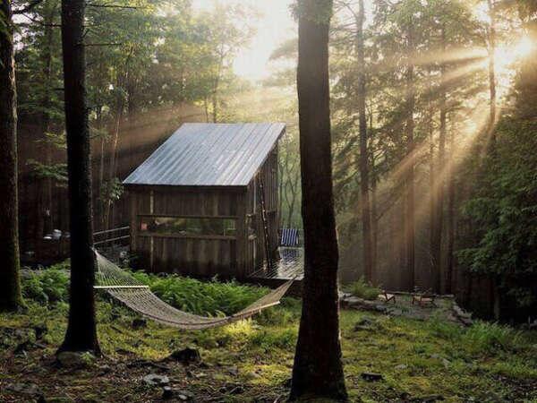 Регулярно проводить несколько дней на природе без будничных дел и технологий