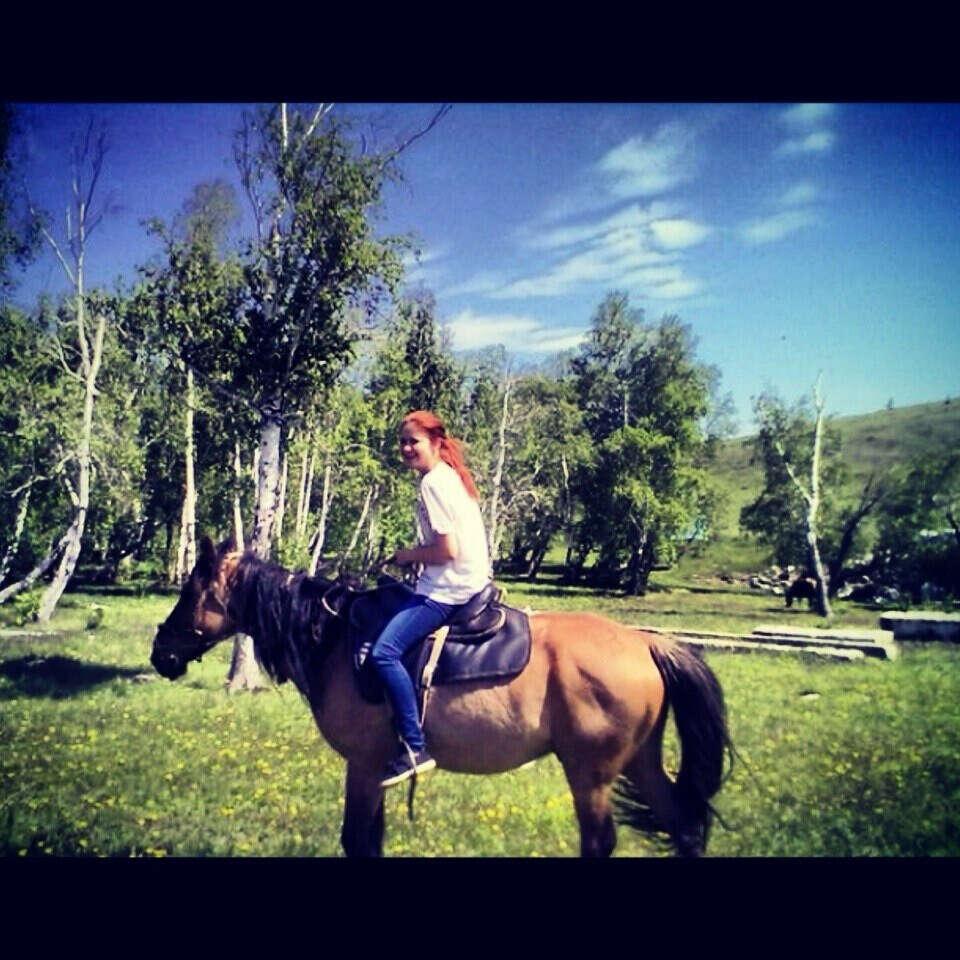 Хочу,покататься на лошадях