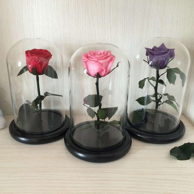 Маленький Принц Стеклянная Крышка Свежий Сохранились Роза Бессмертным Красочных Роз для Девушки День святого валентина Свадебные Подарки