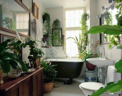 Ванную с растениями