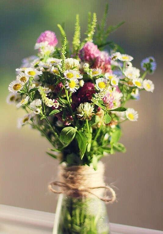 Цветы. Любые. Я их очень люблю