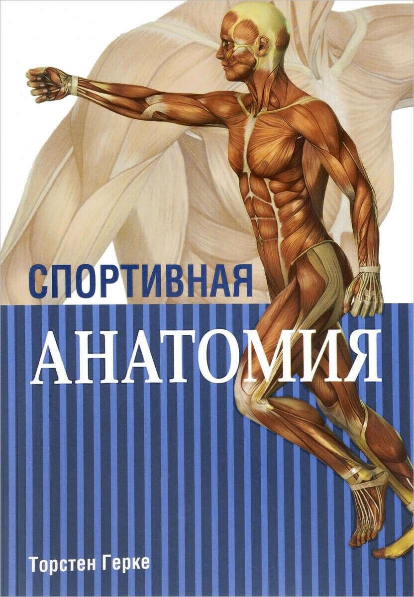 Спортивная анатомия | Торстен Герке