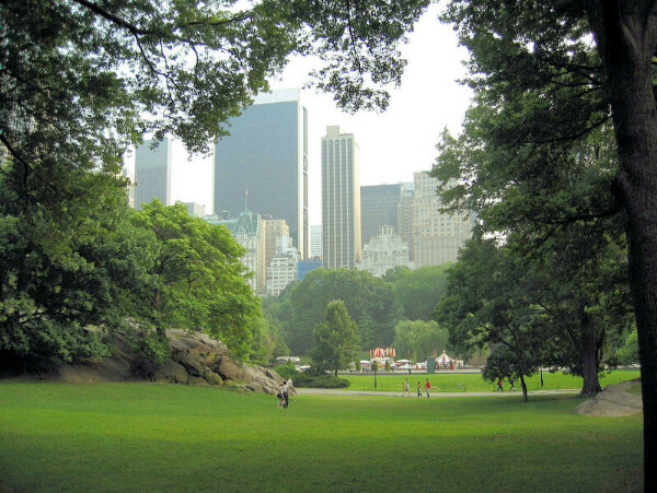 Совершить двухкилометровую пробежку по Центральному парку Нью-Йорка