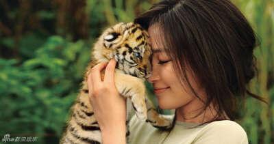 Потискать тигрёнка