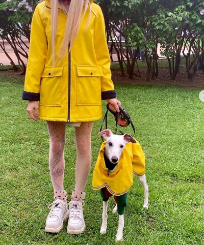 Парная одежда с собакой