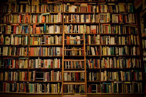 Собрать огромную домашнюю библиотеку.