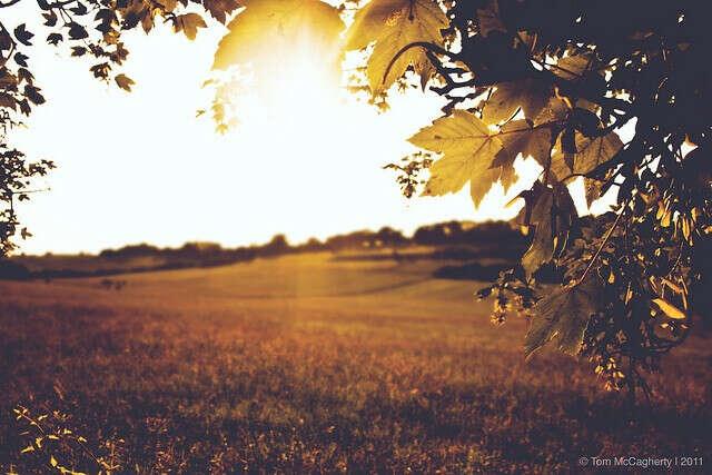 Теплую осень