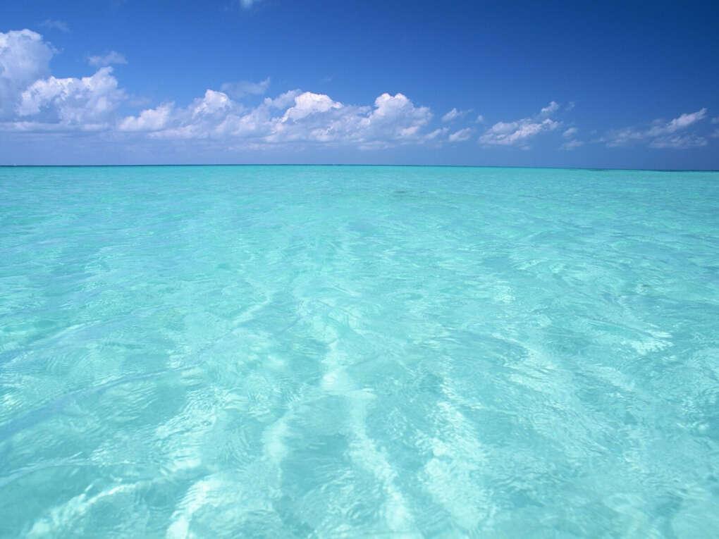 Увидеть все океаны