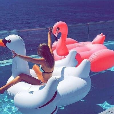Надувного лебедя или фламинго