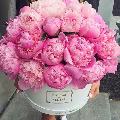 Цветы в шляпной коробке по понедельникам!)