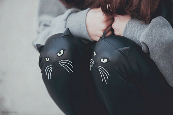 Леггинсы с котами