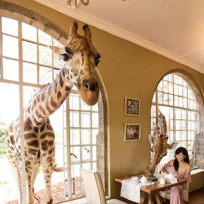Побывать в Giraffe Manor Hotel с семьей