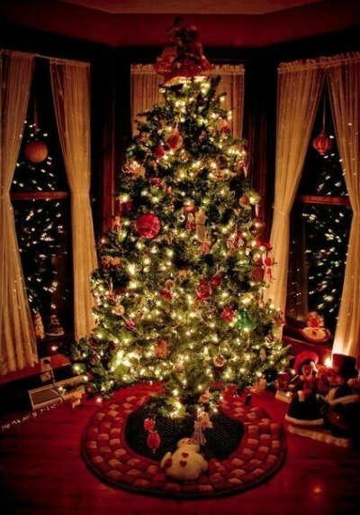 Идеальную елку на Новый год