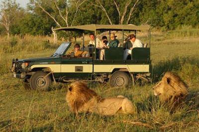 Поездка на Африканское сафари
