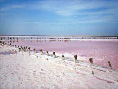 Розовое озеро Сиваш (Херсонская обл.)