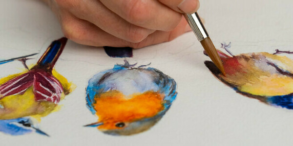 Artistic Watercolor Techniques for Illustrating Birds. A course by Sarah Stokes , Artist