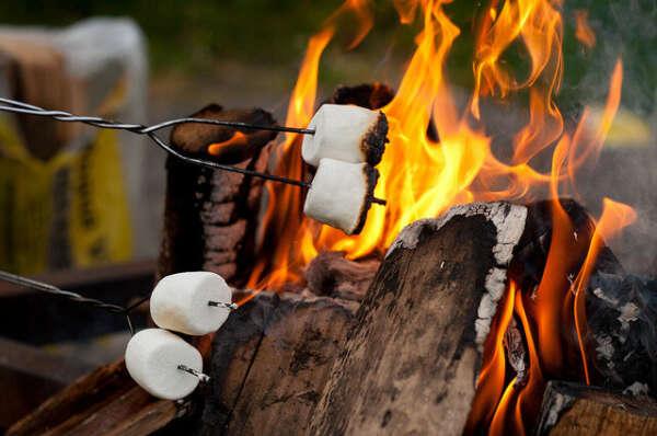 Пожарить зефирки на костре