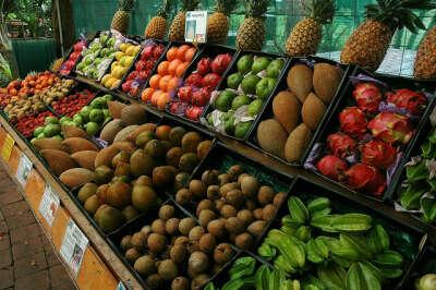 Попробовать тропические фрукты