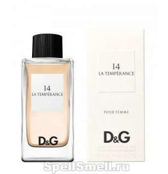 Dolce & Gabbana - D and G Anthology La Temperance 14