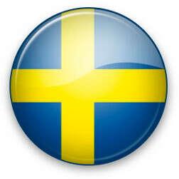 Индивидуальные курсы шведского языка