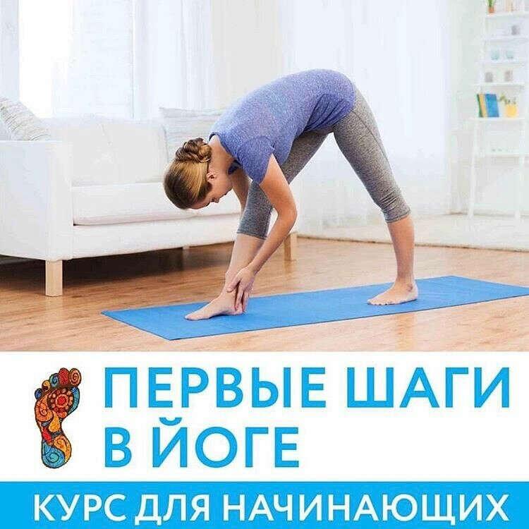 Йога (курс для начинающих)