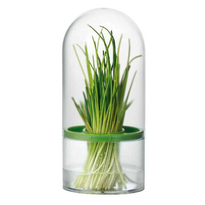Контейнер для хранения зелени