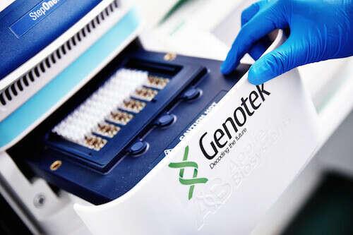 ДНК-тест «Генеалогия»