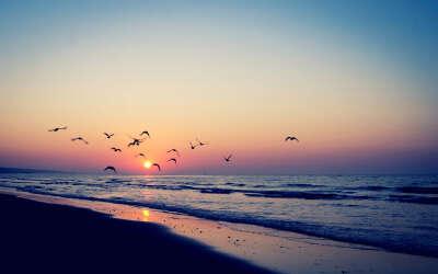 хочу на море:З