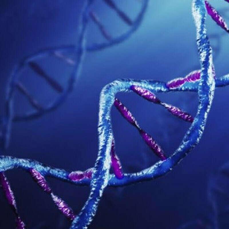 ДНК тест на этническую принадлежность
