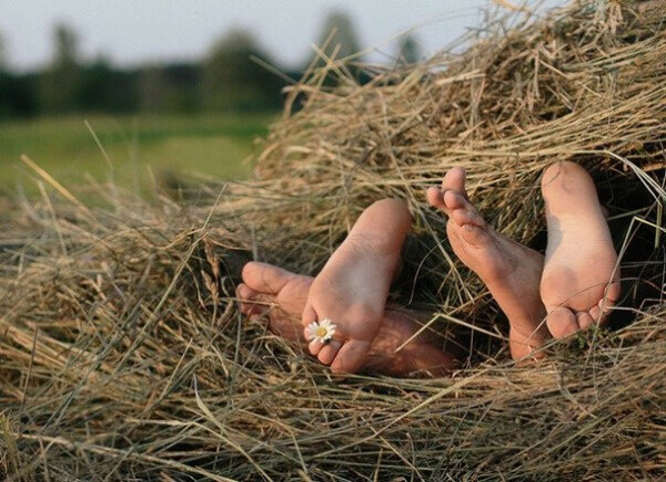 Поваляться на стоге сена