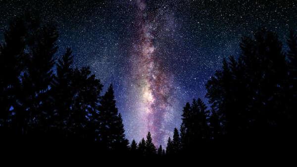 Лежать на крыше и смотреть на звезды