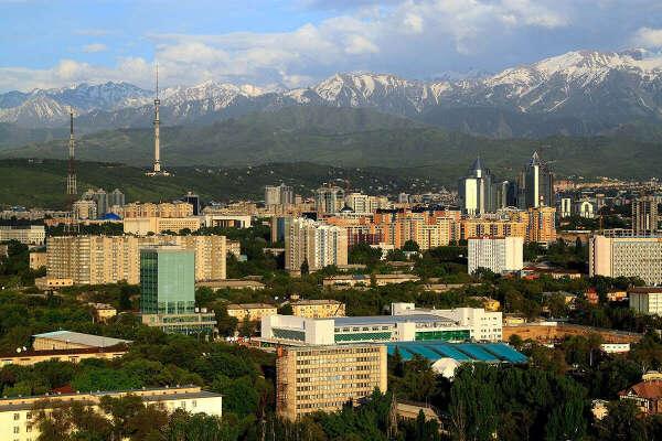 Поехать с семьёй в Алмату