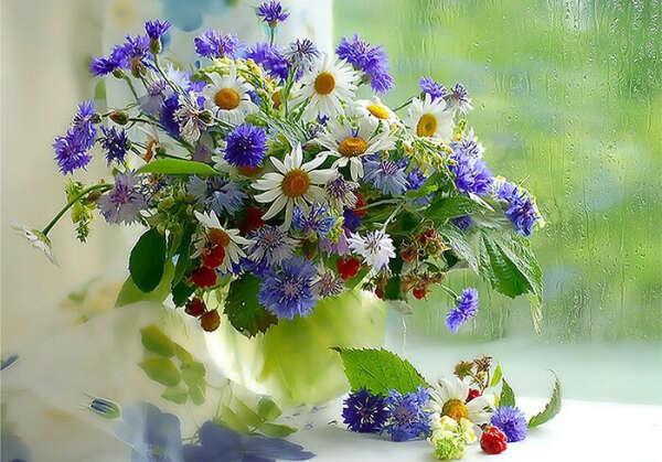 Я хочу,чтобы мне подарили цветы:3