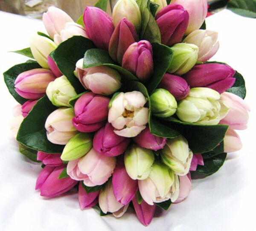 Букет тюльпанов <3