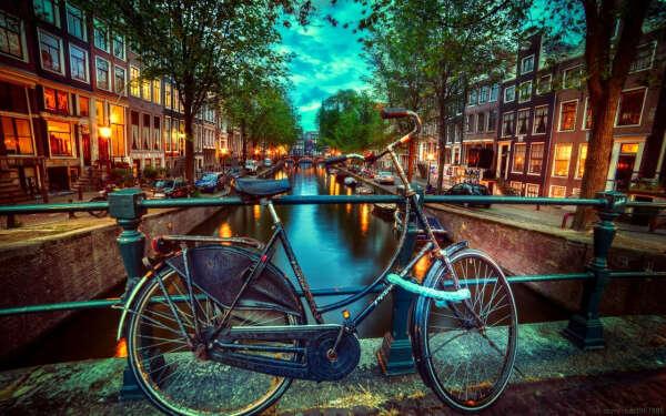 отправить родителей в Амстердам!