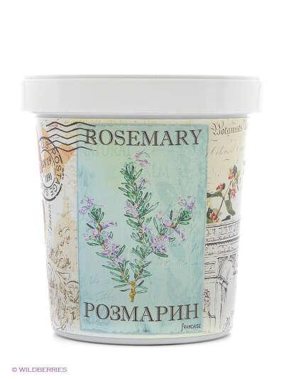 Набор для выращивания Розмарин, Rostokvisa