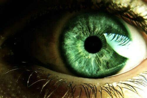 Сделать фото радужной оболочки глаза