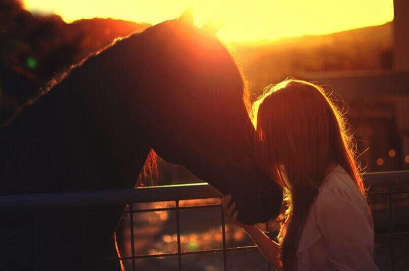 Кататься на лошади