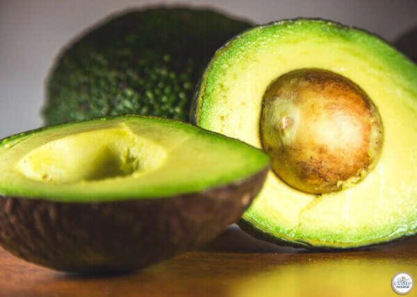 вырастить дерево авокадо