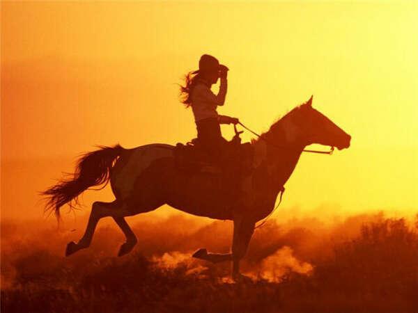 Хочу заниматься конным спортом!