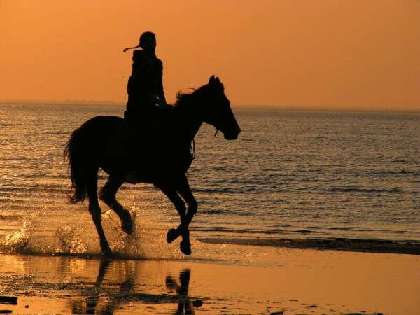 Прокатиться по берегу моря