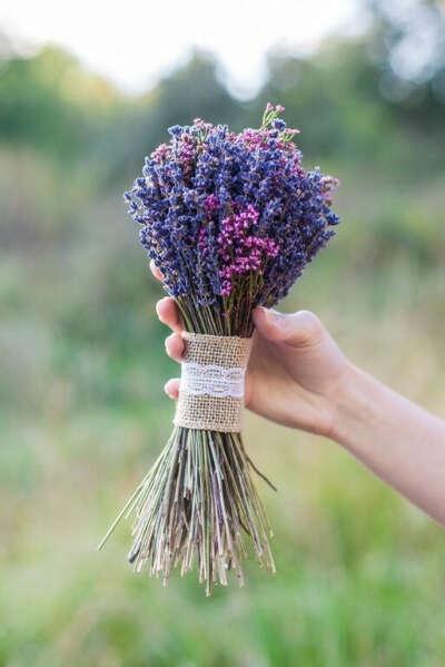 Букет из сухоцветов лаванды