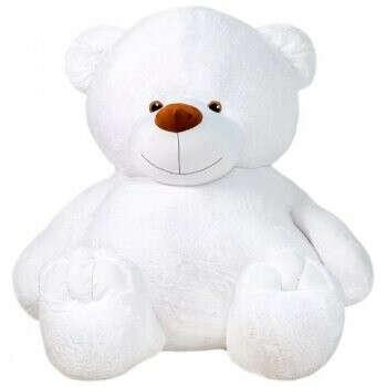 Медведь Зевс - больше 2 метров!!